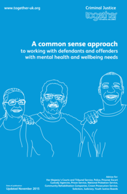 A common sense approach to working with defendants with mental health and wellbeing needs Guide